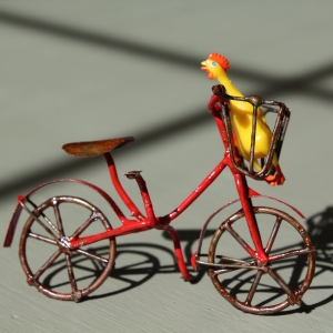 The world's tiniest rubber chicken taking a ride on a bike.